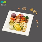 Disposable sugarcane bagasse pulp square paper dinner plate,100% biodegradable sugarcane tray