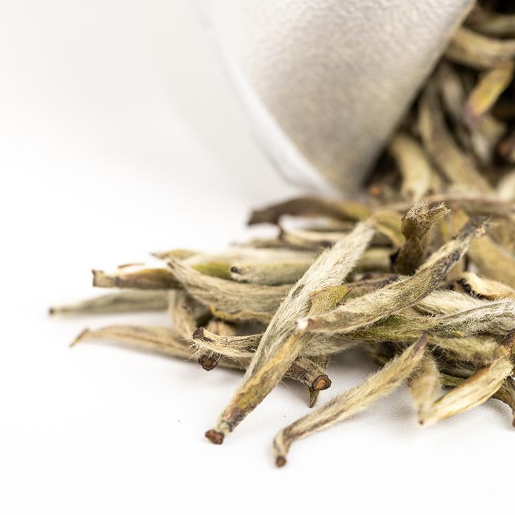 Premium Planting Natural Organic Loose Tea Fragrant Mellow the Silver Needle White Tea - 4uTea | 4uTea.com