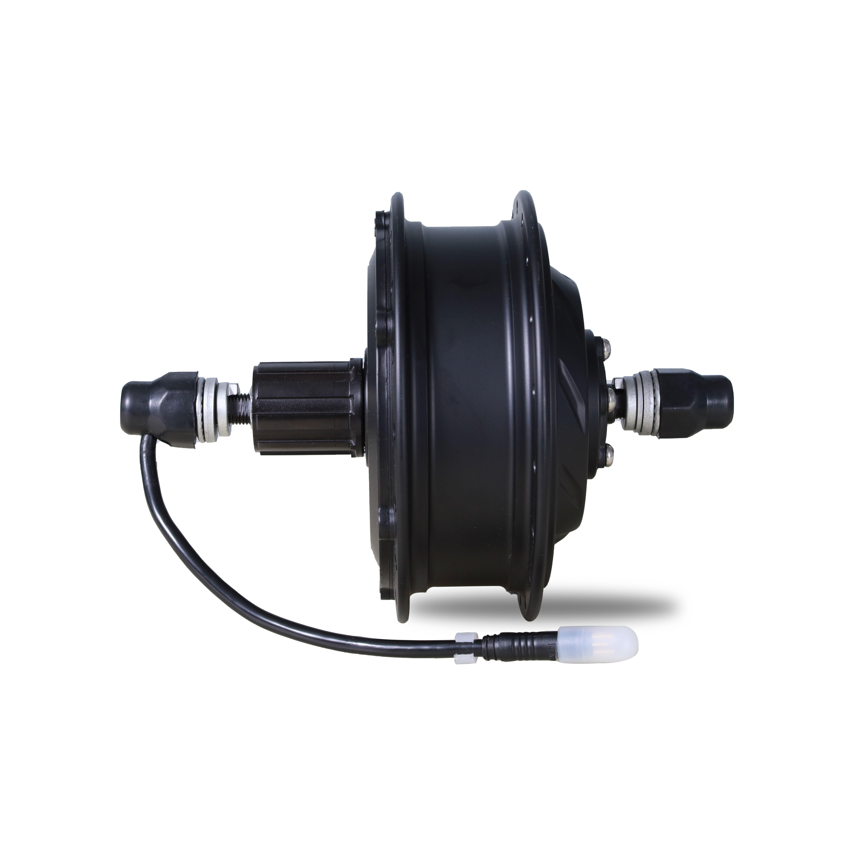 roller brake e-bike motor