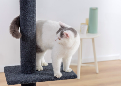 95-113inch Pet Cat Tree Furniture Pet Tree for Cats Cat Tower Cat Activity Tree for Kittens Pet House Play Toy For Cats