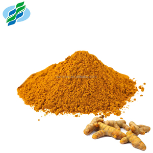 Wholesale Pure Natural Tumeric Extract 95% 98% Curcumin Powder
