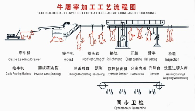 High quality new automatic slaughtering equipment conveyor belt for food processing