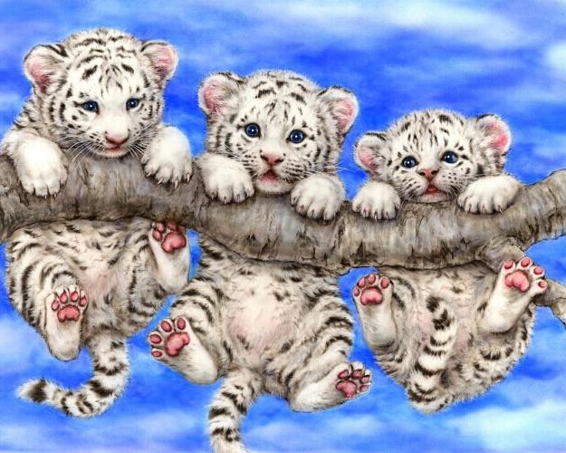 Persegi Lukisan Berlian Bulat 5D Bor Resin Parrot Mosaik Kit Alat Alat Jahit & Aksesori untuk Seni dan Kerajinan JJH2157