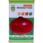Hot sale 2019 harvest quality Chinese vegetable hybrid red onion seeds
