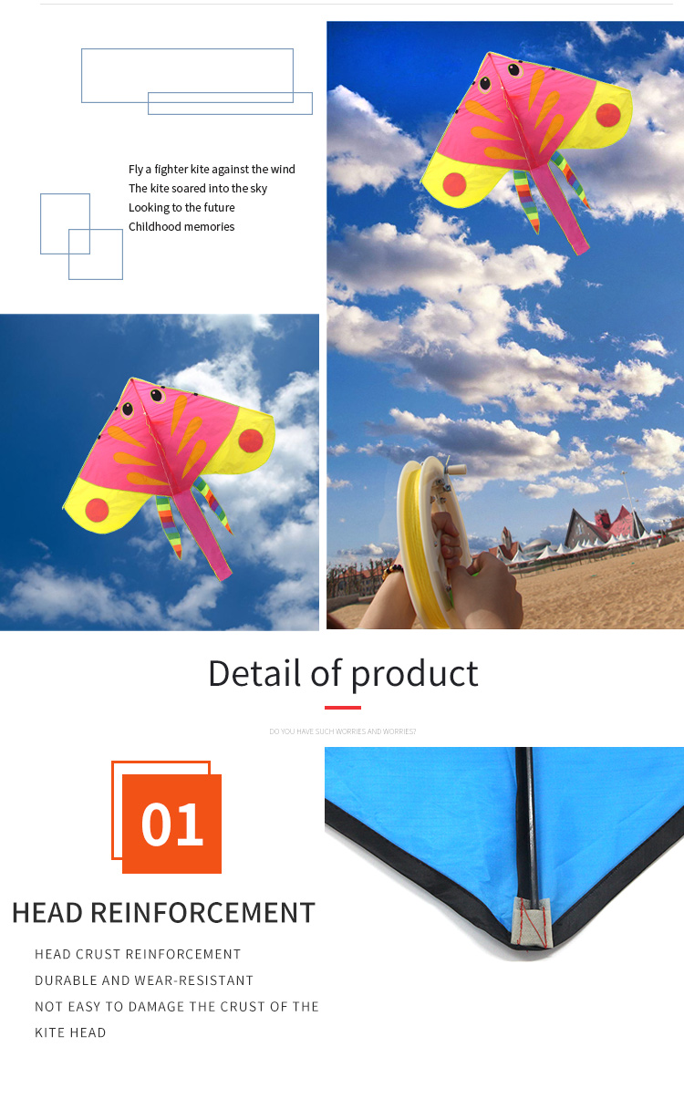 Factory direct price concessions easy flying fish  sport animal kite