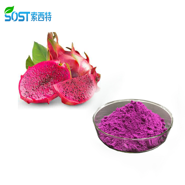 Natural Wholesale Freeze Dried Red Dragon Fruit Powder