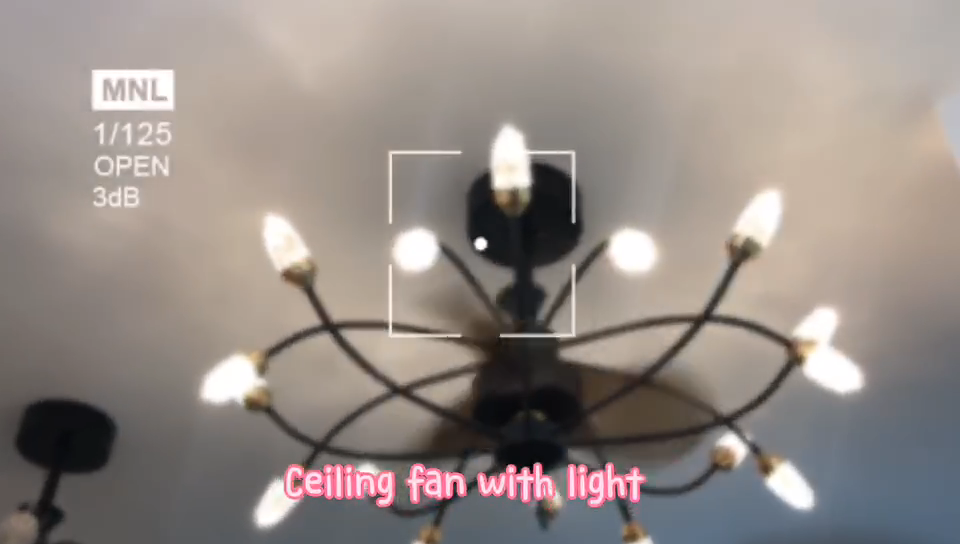 Modern ceiling fan with led light Spotlight ceiling fan lighting control DC motor lighting changeable plywood blades