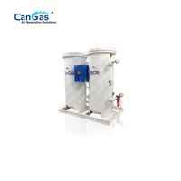 95%-99.9999% Nitrogen generation PSA generator plant factory price 30 years manufacturer supplier high purity automatic portable