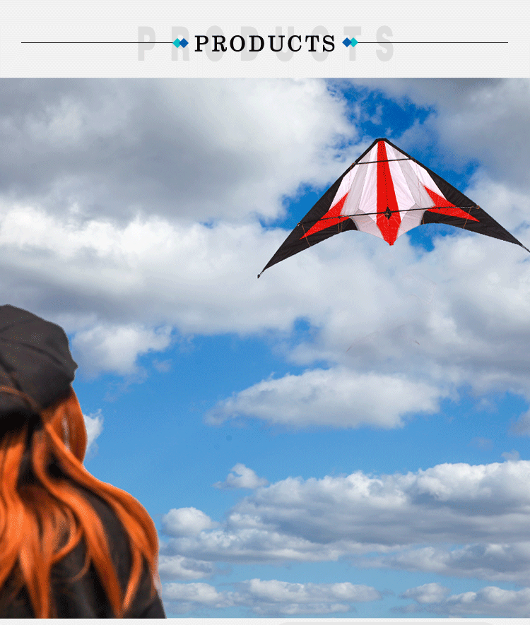 high quality Double line professional stunt kite
