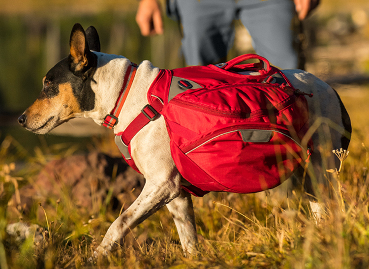 Easy Control Pet Dog Outdoor Travel Hiking Camping Saddle Bag  Red Backpack Harness