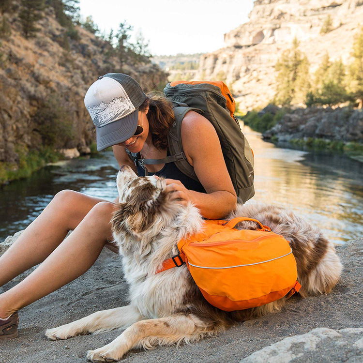Popular Best-selling Fluo Orange Durable Hiking Backpack Saddle Bag for Large Dogs
