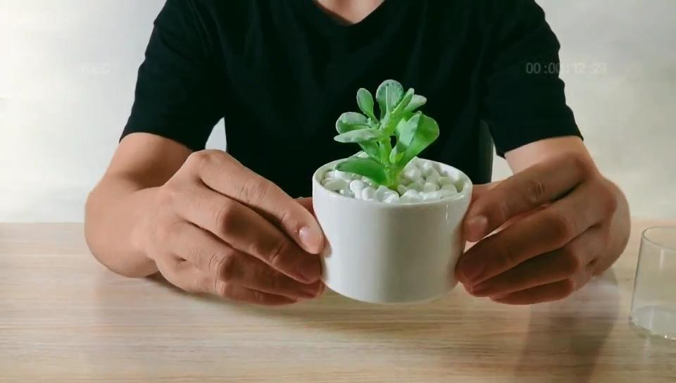 Современный декоративный садовый керамический цветочный горшок плантатор