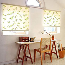 Dual shade blinds window double roller blinds 3D printed blinds