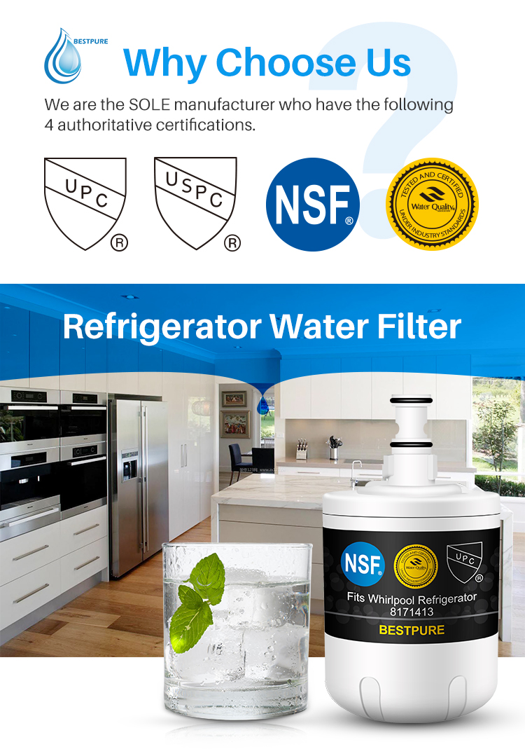 Easy installed compatible refrigerator water fridge filter for 8171413 EDR8D1