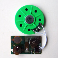 2 pcs cell battery recordable sound chip