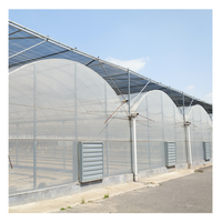 Low Cost Multispan PO Film Agricultural Greenhouse for Sale with NFT Hydroponic Systems