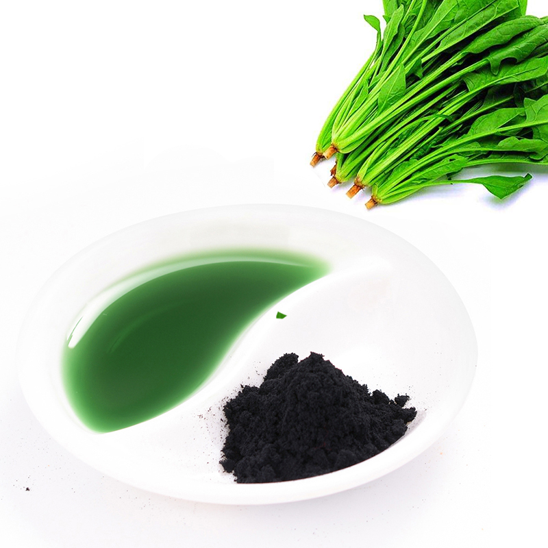 Natural plant extract beet root extract powder supply