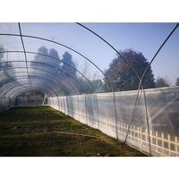 High Quality Single Span Vegetable Greenhouse with High Tunnel