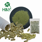 Moringa Natural Fresh Moringa Leaf Extract Powder Moringa Moringa Leaves