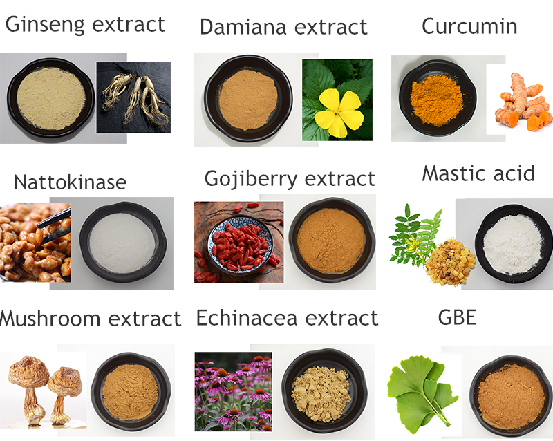 High Quality Natural Cortex Moutan/Peony Bark Extract 98% Paeonol Powder