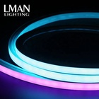 Rgb With Led Strip Led Led Strips Rgb Waterproof Multifunctional Rgb With Ce Certificate IP65 Waterproof 16*16mm SMD5050 DC 24V Led Strip Neon