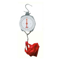 Salter Baby hanging weighing scale