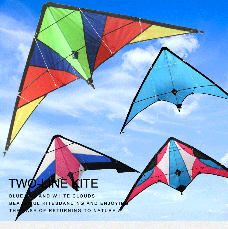 2020 hot selling playing training Custom Printed  stunt toy parafoil dual line Sport  kite