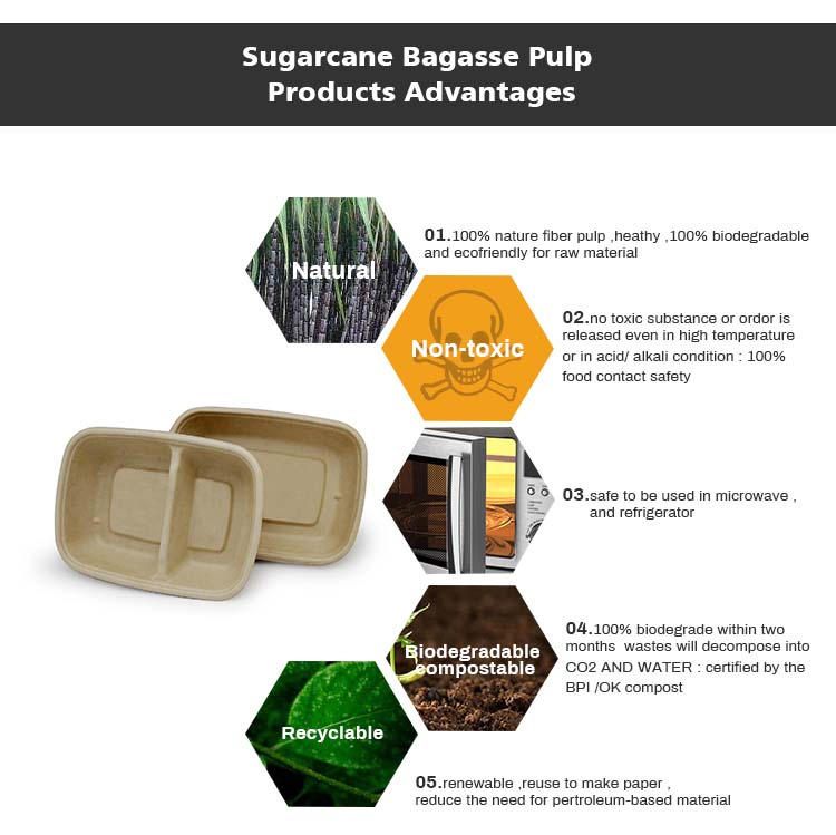 Sugarcane bagasse disposable food compostable plates with lid