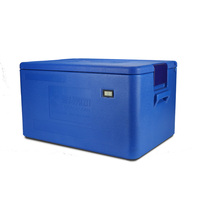 Reusable Preserving Cold Chain Seafood Fruit Ice Pack Cooler Box