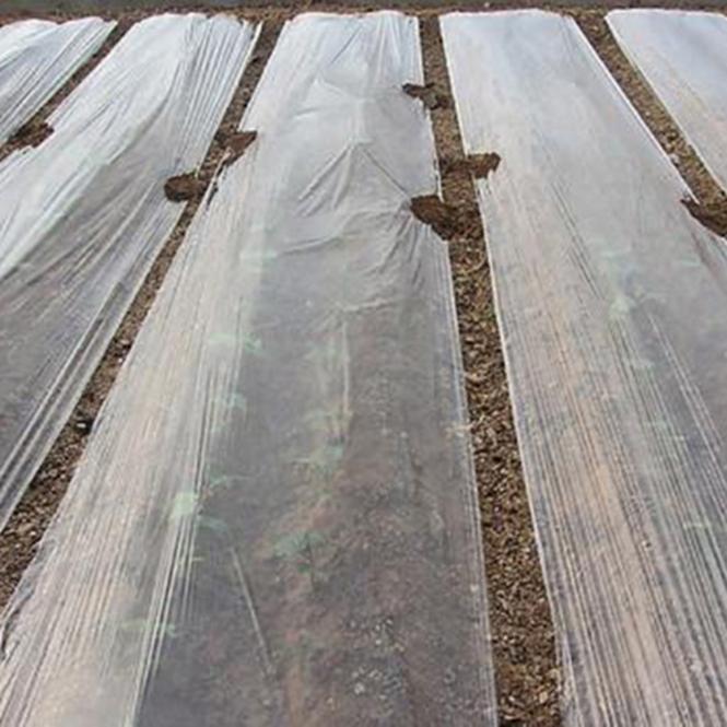 Agricultural plastic film Black&Silver Mulch film