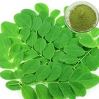 Moringa Oleifera Wholesale Moringa Powder Price Organic Natural Moringa Leaf Powder Moringa Oleifera Capsules Wholesale Price