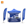 Custom 3 x 3m Promotion customized trade show outdoor canopy tent