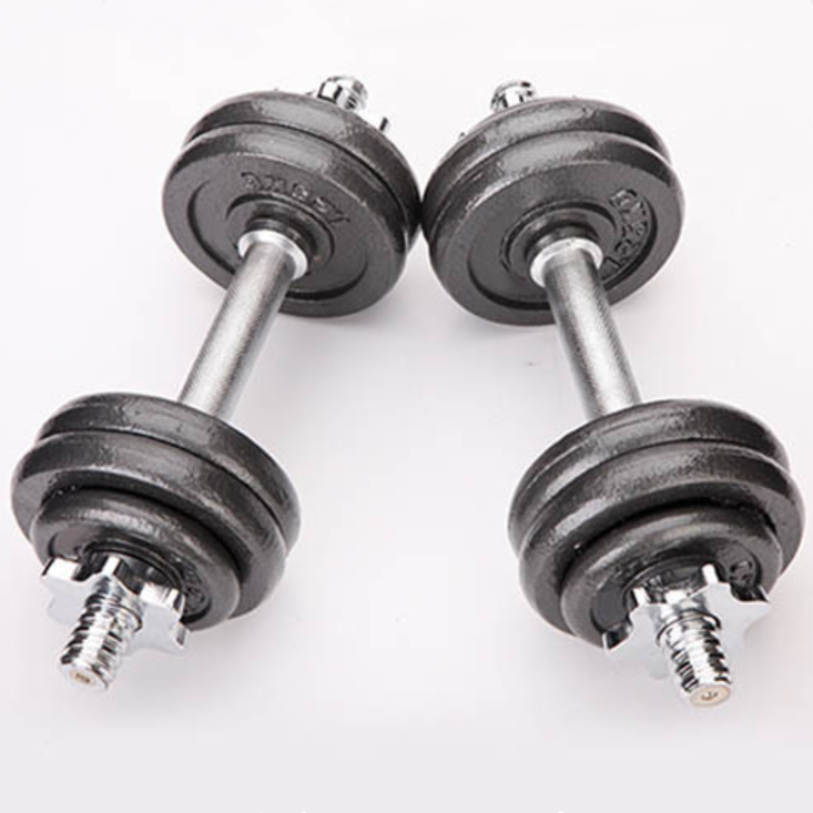 Alta Elasticidade Conjunto de Halteres de Ginástica 20kg 50kg Round Stoving Verniz Revestido Haltere