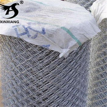 Hexagonal Hole Shape and Galvanized Iron Wire Material reverse twist hexagonal wire mesh