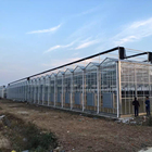 Venlo type glass greenhouse Agricultural Glass Greenhouse indoor glass greenhouse