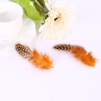 Manufacturer Decorative Dyed Orange Guinea feather