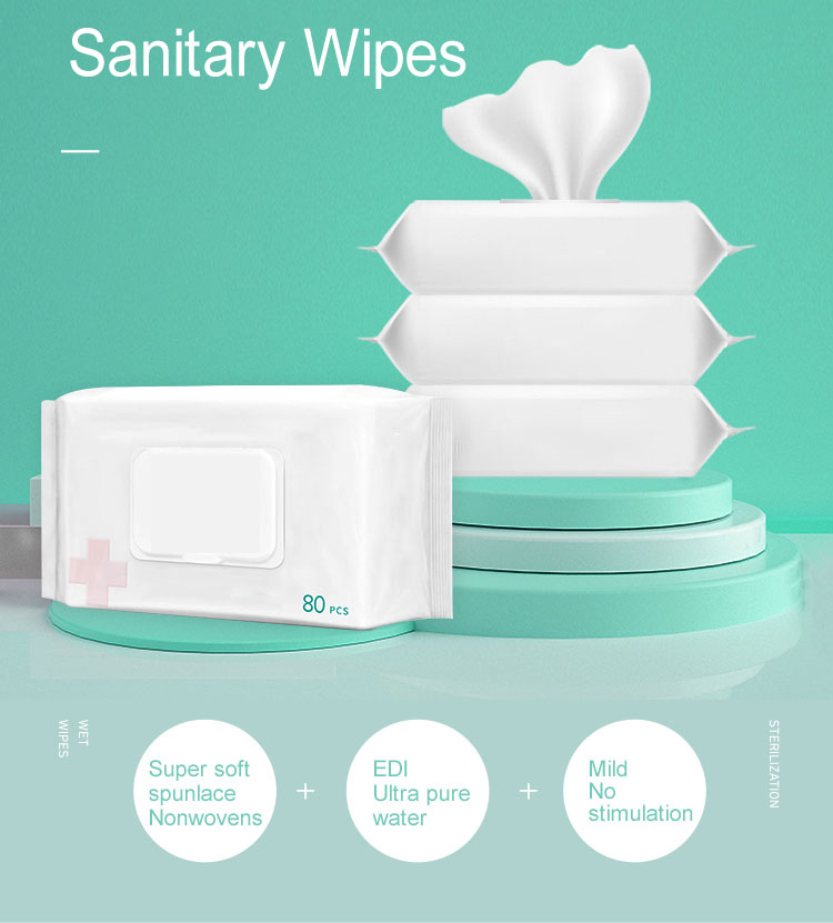 Manufacturer Mini Surface Facial Hand Body Cleaning 10 Pieces Organic Wet Wipes