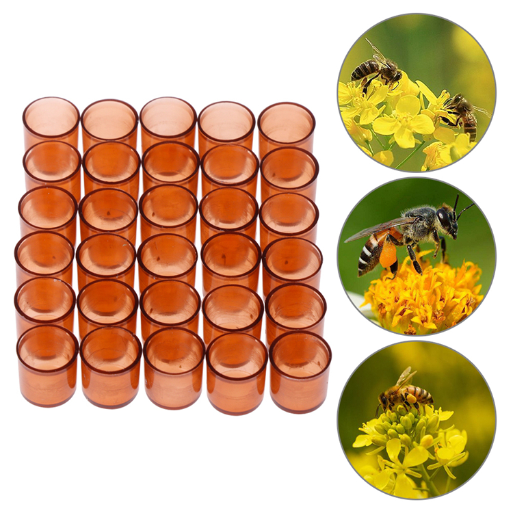 200pcs//set Beekeeping Queen Cell Cups Queen Bee Keeper Rearing Equipment Supply