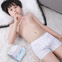 2019 New Comfy Children Underpants Young Boys Panties Modeling