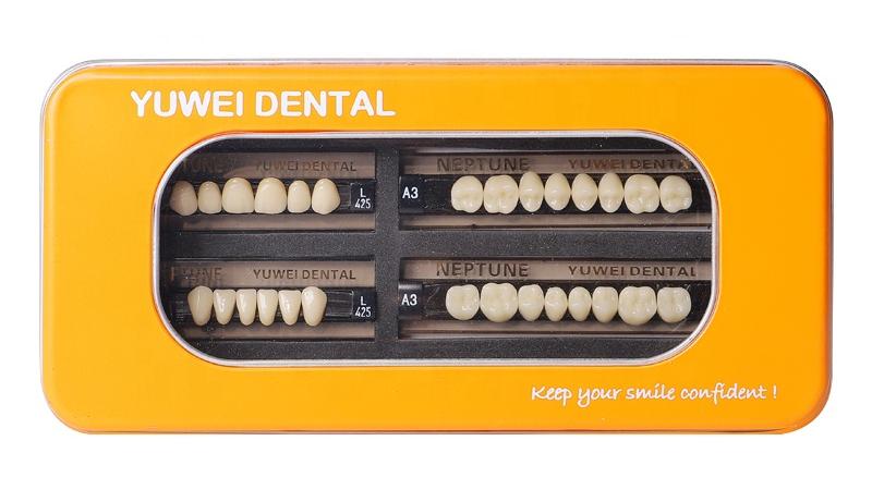 Dental Labs Acrylic 3DS synthetic resin teeth
