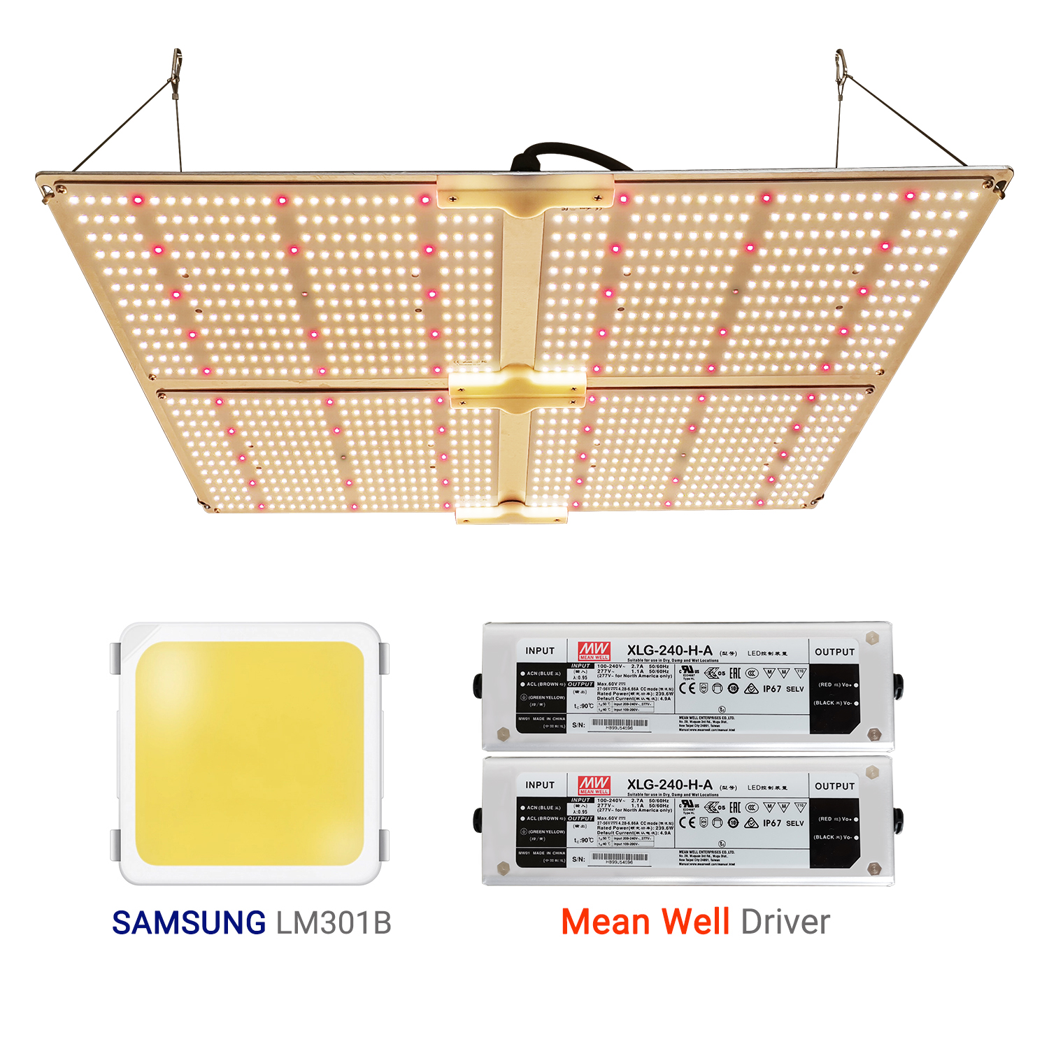 Samsungs lm301b lm301h lm561c lm561h replace 100W <strong>CREES</strong> CXB3590 Grow Light CXB 3590 3500K COB Led Grow Light