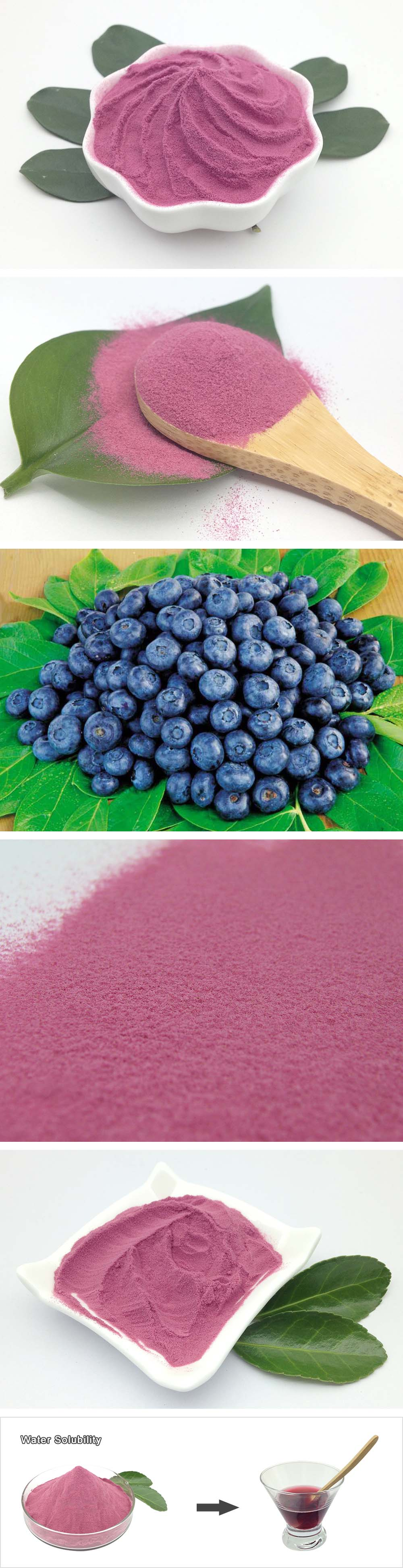 Manufacturer Wholesale Concentrate Blueberry Juice Powder