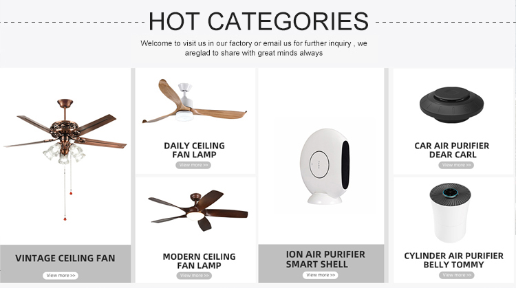 2019 Hotsale אופנה קל לשימוש בית אוויר מסיר לחות ביעילות מסיר לחות