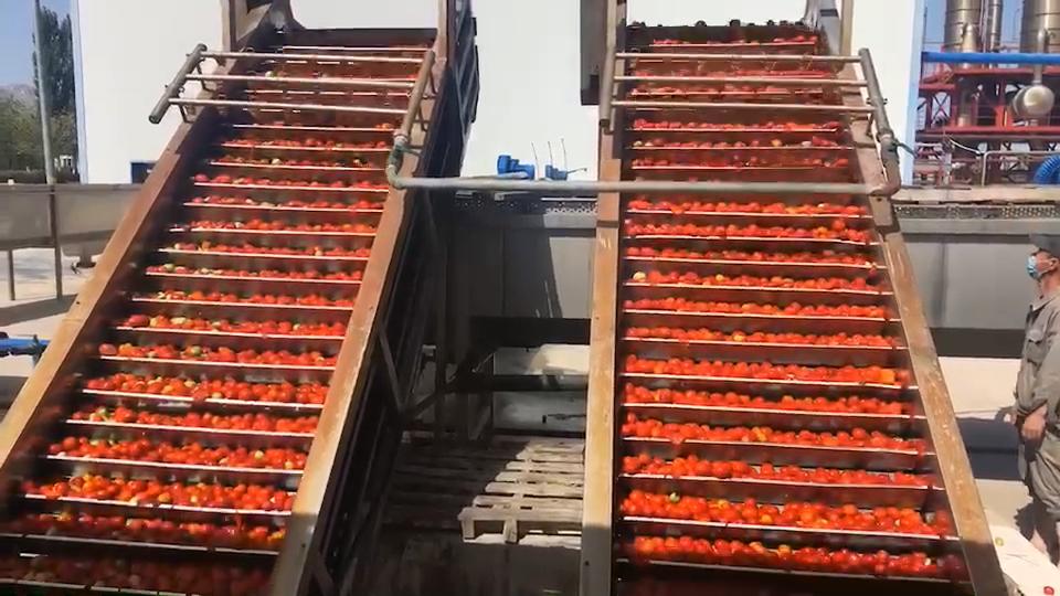 Pâte en sachet de tomates, emballage en boîte, 2200 grammes, dure et ouvert, pour nourriture musulmane certifié à la kale
