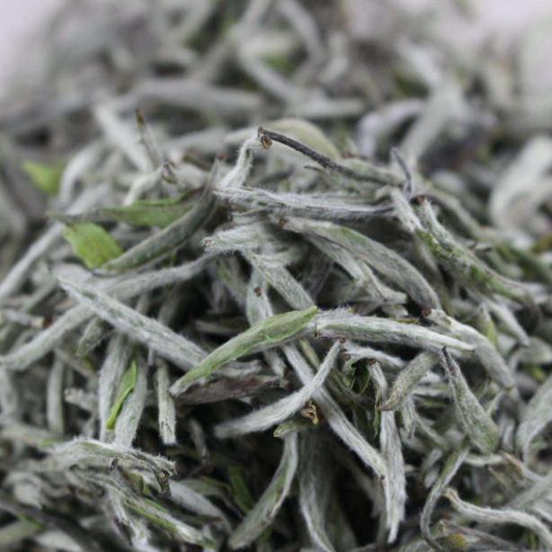 First Grade Chinese Precious White Silver Needle White Tea with competitive price - 4uTea | 4uTea.com