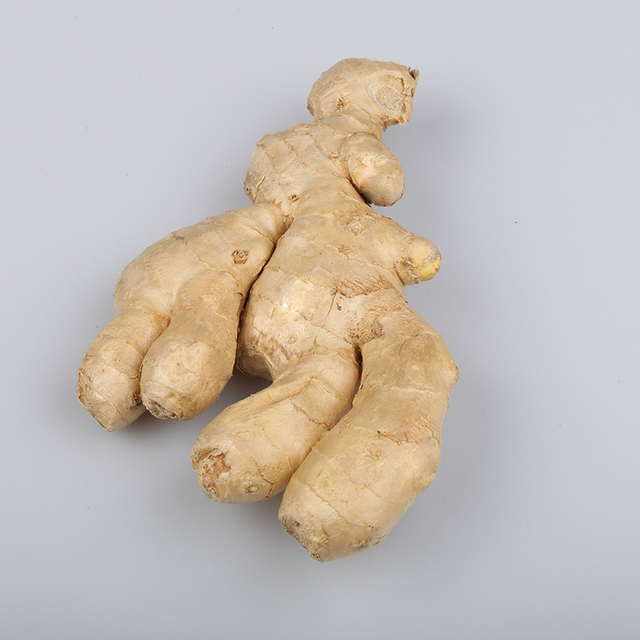 Wholesale Prices Air Dry Ginger Roots 50g,100g,150g,200g,250g and up