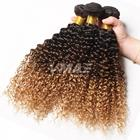 VMAE Cheap Raw Virgin Peruvian 1B/4/27 1B/4/30 Mixed Three Color KInky Curly Loose Body Hair Weave Human Ombre Hair Extension