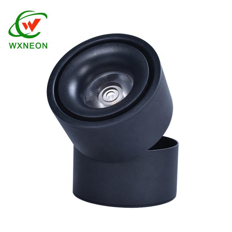 Warm White AC85-260V 7W Foldable Rotatable Led COB Spot Light For Living Room Bedroom Hallway