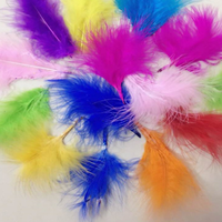 Balloon Accessories Decoration Props Colorful Filling Bubble Balloon Feather