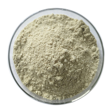 best price high purity organic hemp protein powder